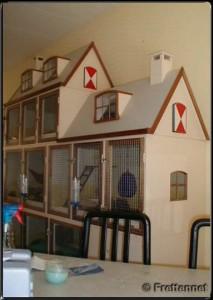 Zelfbouw frettenkooi van Angélique en Elco