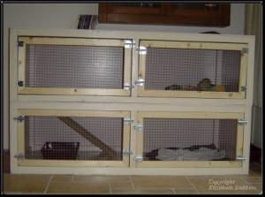 Eigen zelfbouw frettenkooi met deurtjes